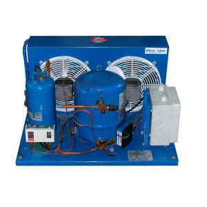 Motor Fasco D1124 115v...